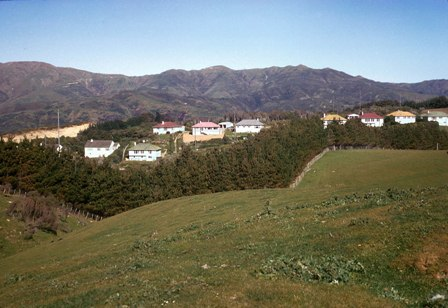 01 Makara Radio houses looking east.jpg