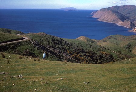 04 Looking north to Kapiti Island from Makara hills.jpg